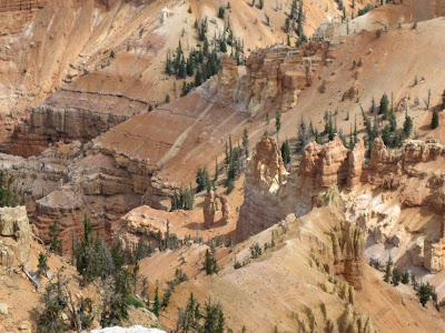 Looking into Cedar Breaks National Monument Utah