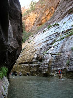 Walking the Virgin River Zion National Park Utah