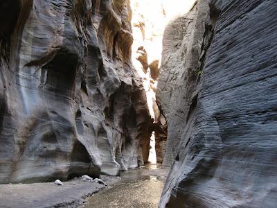 Orderville Canyon along Virgin River Zion Natinal Park Utah