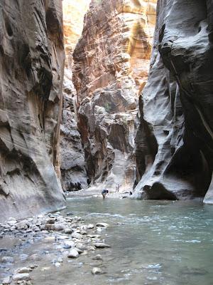 The Narrows Virgin River Zion National Park Utah