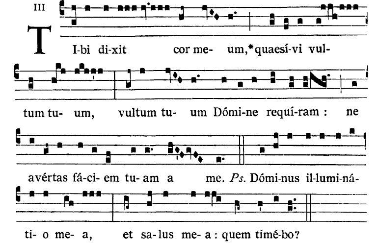 Image result for Tibi dixit cor meum quaesivi vultum tuum introit