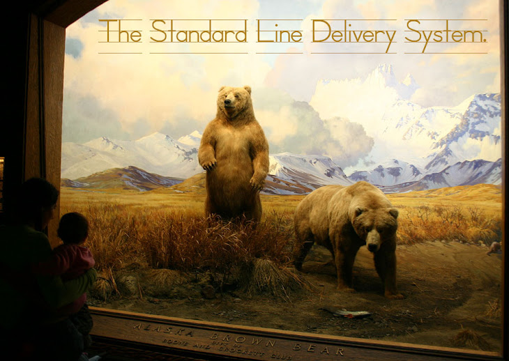 The Standard Line Delivery System Two Thousand And Nine
