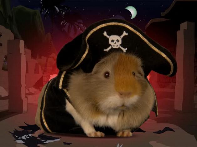 Bonglo Blog Animal Pirates