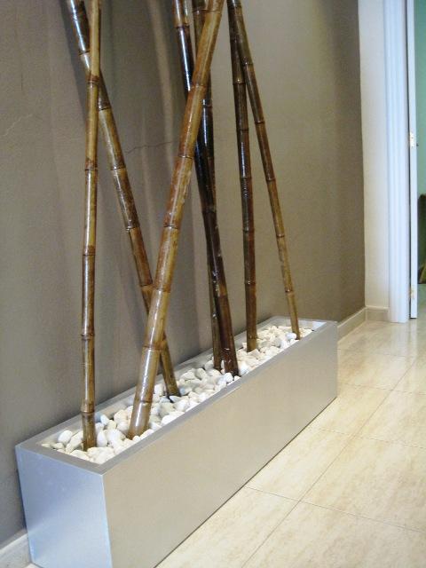 Nuevos aires para un sal n de est tica ministry of deco - Canas de bambu decoracion exterior ...