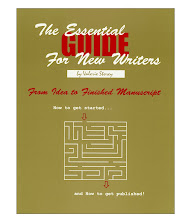 The Essential Guide for New Writers