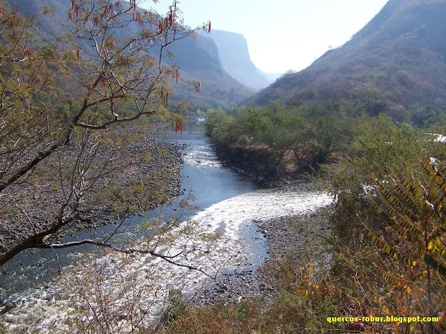 Confluencia del Río Verde y Río Santiago