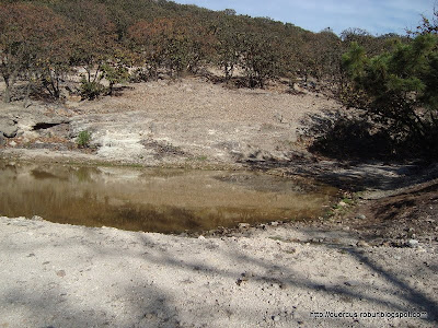 Presa de agua en el Cerro La Mesa