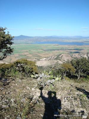 Vista de la Presa de la Vega y el Cerro Tomasillo  desde el Cerro Grande de Ameca