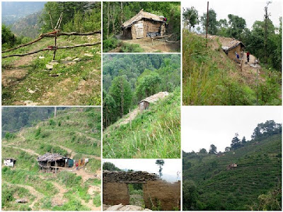 Ramgarh46 NATURE & TREKKING IN THE HILLS...the last Himalayan post!