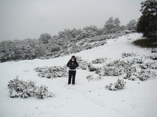San Martín de los Andes, Chapelco, Patagonia, Argentina, Elisa N, Blog de Viajes, Lifestyle, Travel