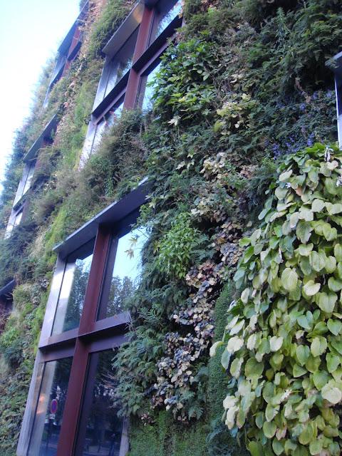 Muro Vegetal, Vegetal Wall, Patrick Blanc, Quai de Branly, París, Elisa N, Blog de Viajes, Lifestyle, Travel