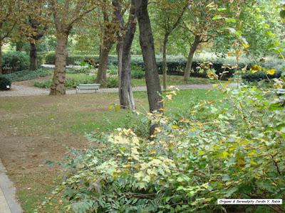 Blog d elisa n voyages photos inspiration voyage et for Jardin yitzhak rabin