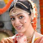Parvathi Melton Hot Pictures