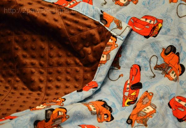 Car Blanket: 2paws Designs