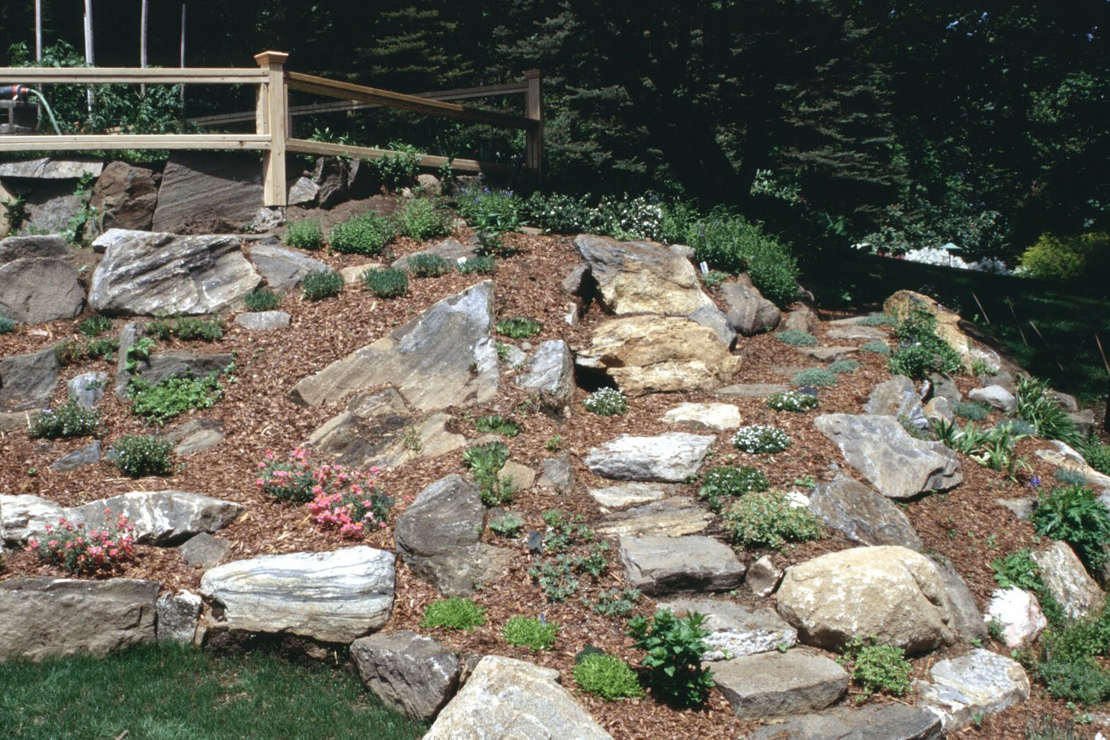 Make a rock garden Landscaping with rocks