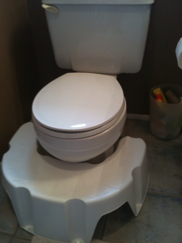Potty Training Confidence With The Little Looster Review