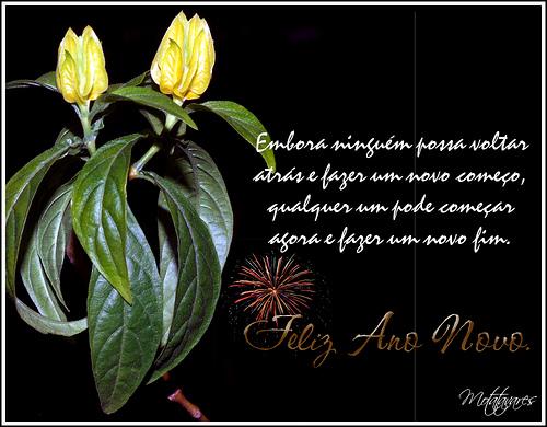 Aline Laitarte: Feliz Ano Novo