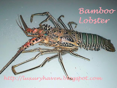 bamboo lobster recipe