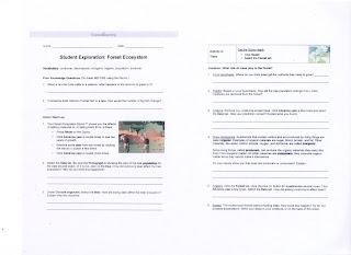 student exploration food chain gizmo answer key explore ...