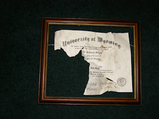 "Conclusion to ""Dog ate my Diploma"""