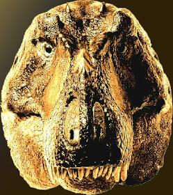 Theropoda: Faccia a faccia con Tyrannosaurus