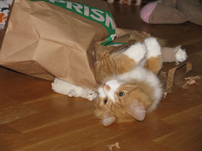 67d0f0902cc74 And I am not having problems here fighting my way out of a paper bag - I am  playing and deliberately looking cute so Äiti will forgive me for not  resting.