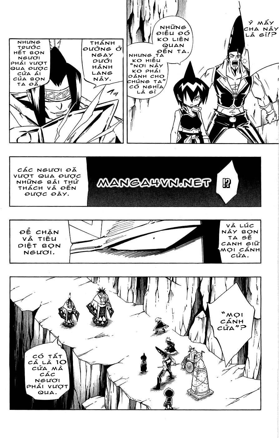 Shaman King [Vua pháp thuật] chap 266 trang 14