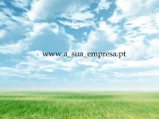 Empresa na Web