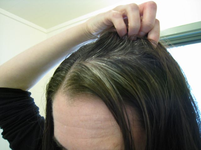 Henna Gloss Gray Hair