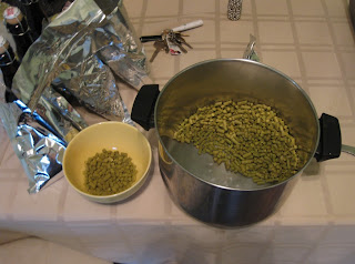 Small bowl of bittering hops, big pot of flameout hops.