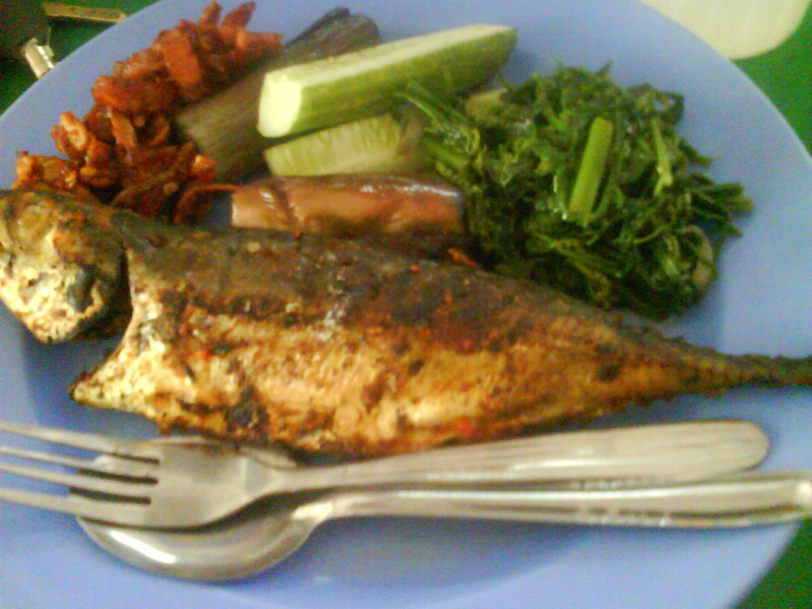 Umpan Ikan Tongsan