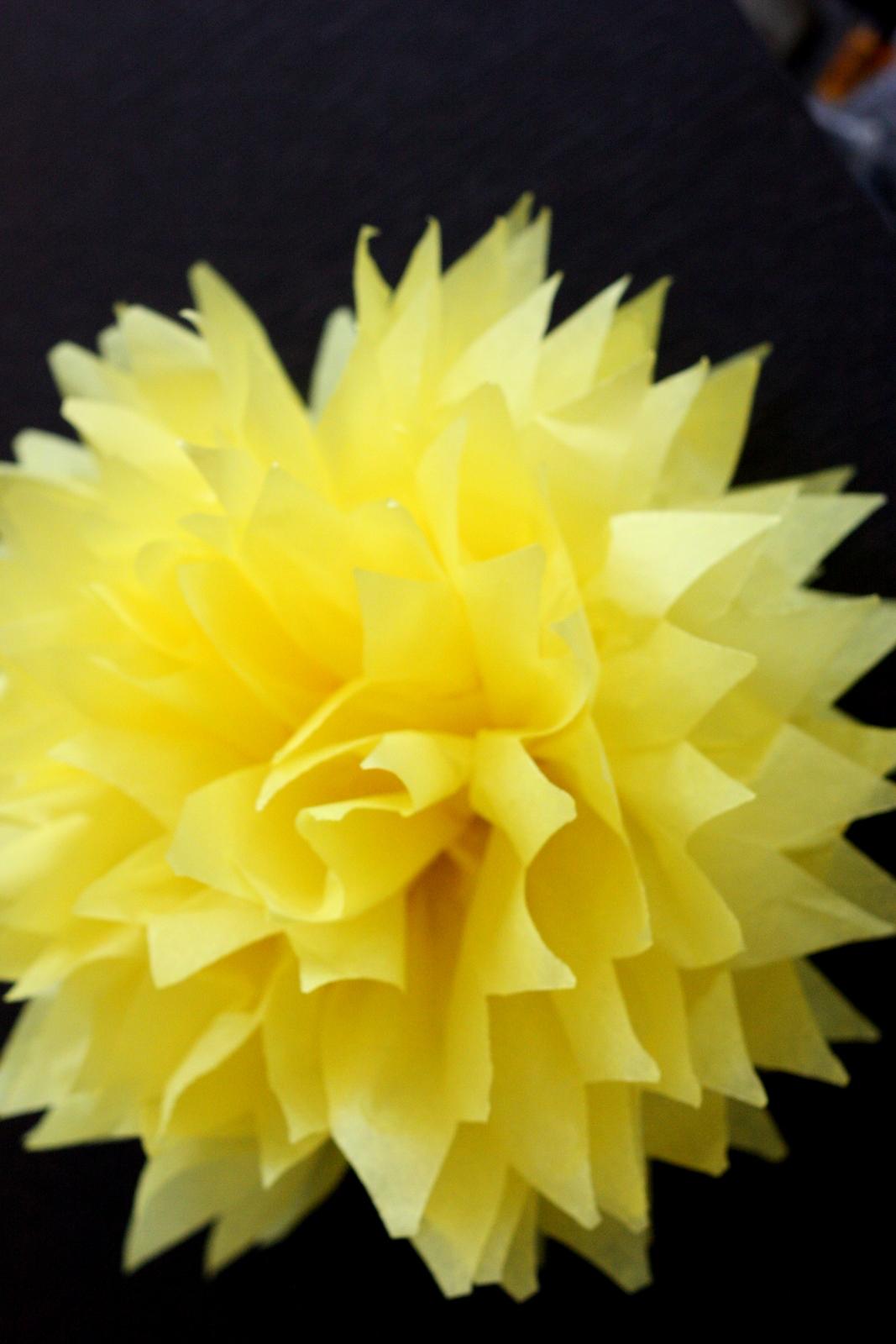 Baking Love Diy Tissue Paper Flowers Pom Poms And Girl