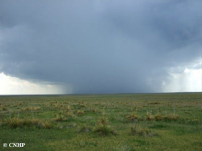 storm clouds over Comanche National Grasslands