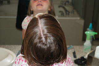 """Back view of young girl's hair being styled into """"twisty buns"""" hairstyle"""