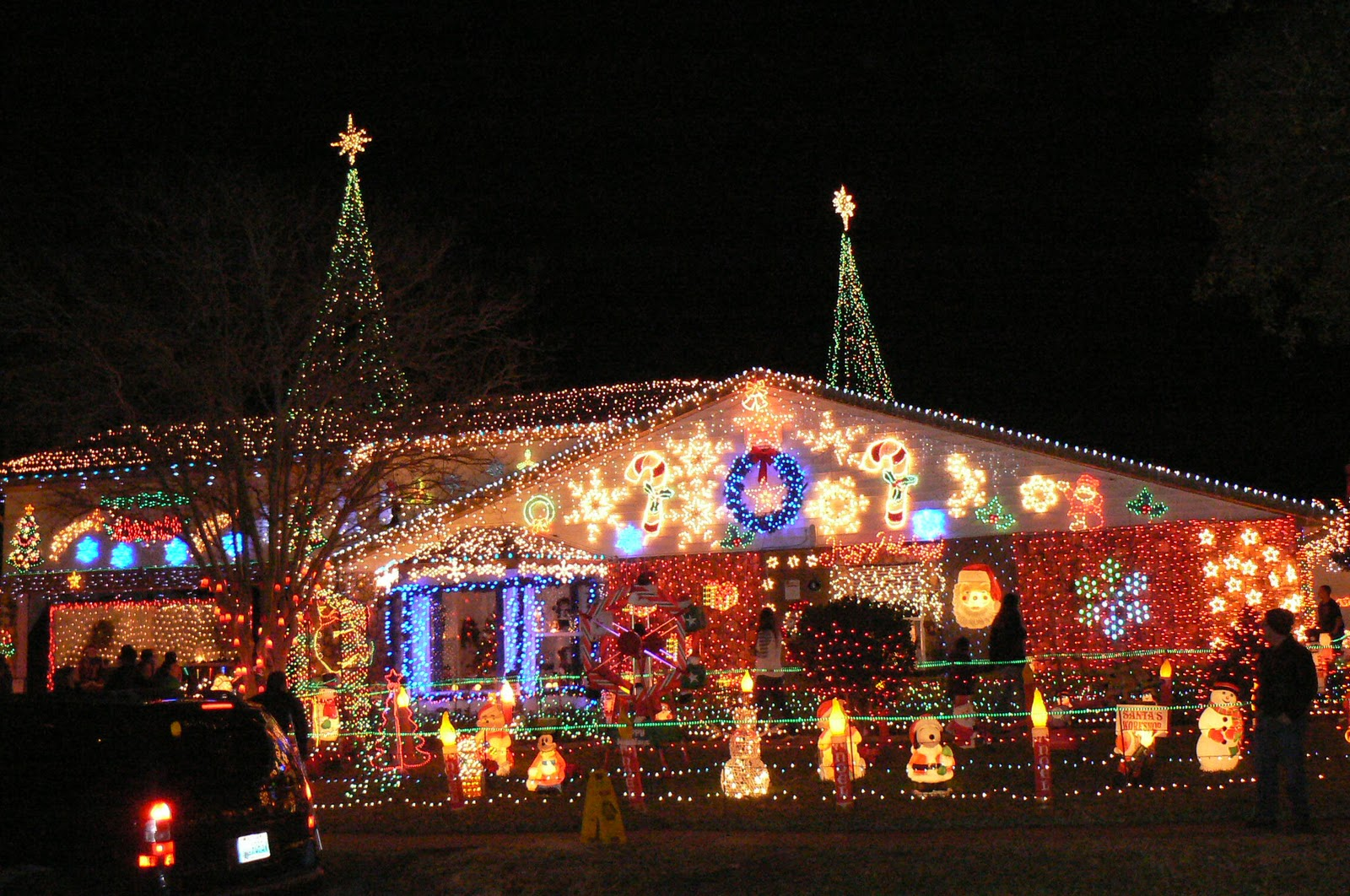 premium selection a02d5 21ac5 Flavorful Excursions: The Best Christmas Lights in Florida