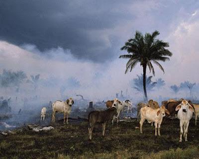 Rondônia, Brasil