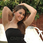 Actress Preethi Jhangiani  Hot Pictures / Photos