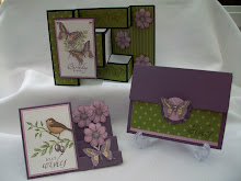Touch of Nature 3D cards and Box Envelope Stamp class instructions