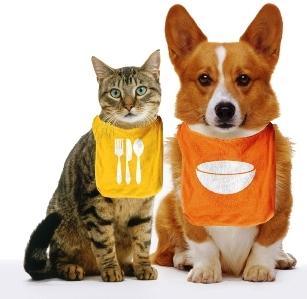Expediente joanfliz piensos para animales fuente segura - Alimento para gatos esterilizados ...
