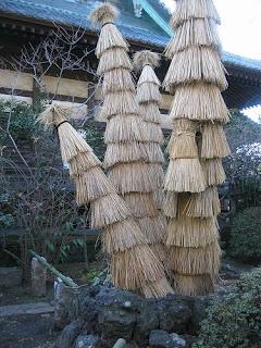 protejare decorativa a plantelor pe perioada rece a anului, protejare de ger a plantelor, ivelire plante iarna