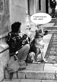 Resultado de imagen de perroflautas con perros