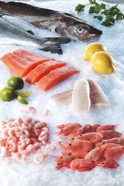 Kolesterolsænkende mad – Sund Slankekur - Nem Slankekur
