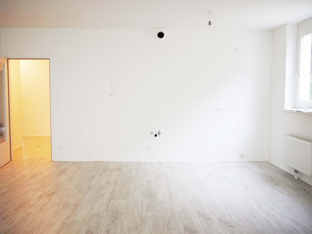 wonderful empty apartment living room | MAY ALL SEASONS BE SWEET TO THEE: Snapshots of New (empty ...