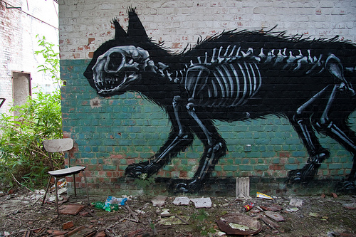 Coolpics Anatomic Animal Graffiti