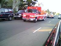 Driver Killed in School Bus Crash 1