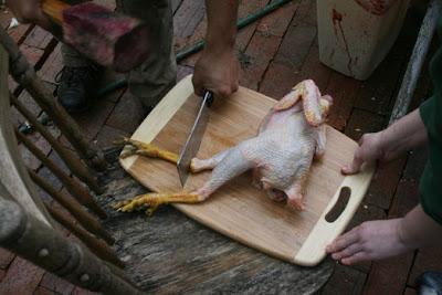 The Öko Box: Homestead Chicken Slaughter, Holy Grossness!