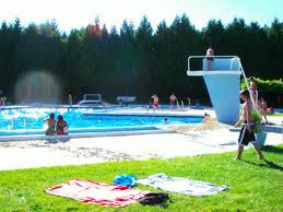 Parque de Campismo de Vila Flor/Vila Flor Camping