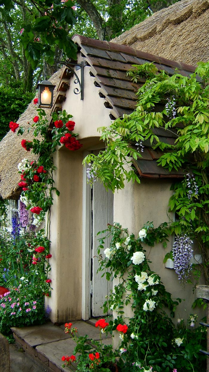 Fine Design: Coming Up Roses: English Cottage Style