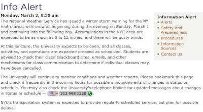 No Snow Day at NYU | Erica Swallow's Blog