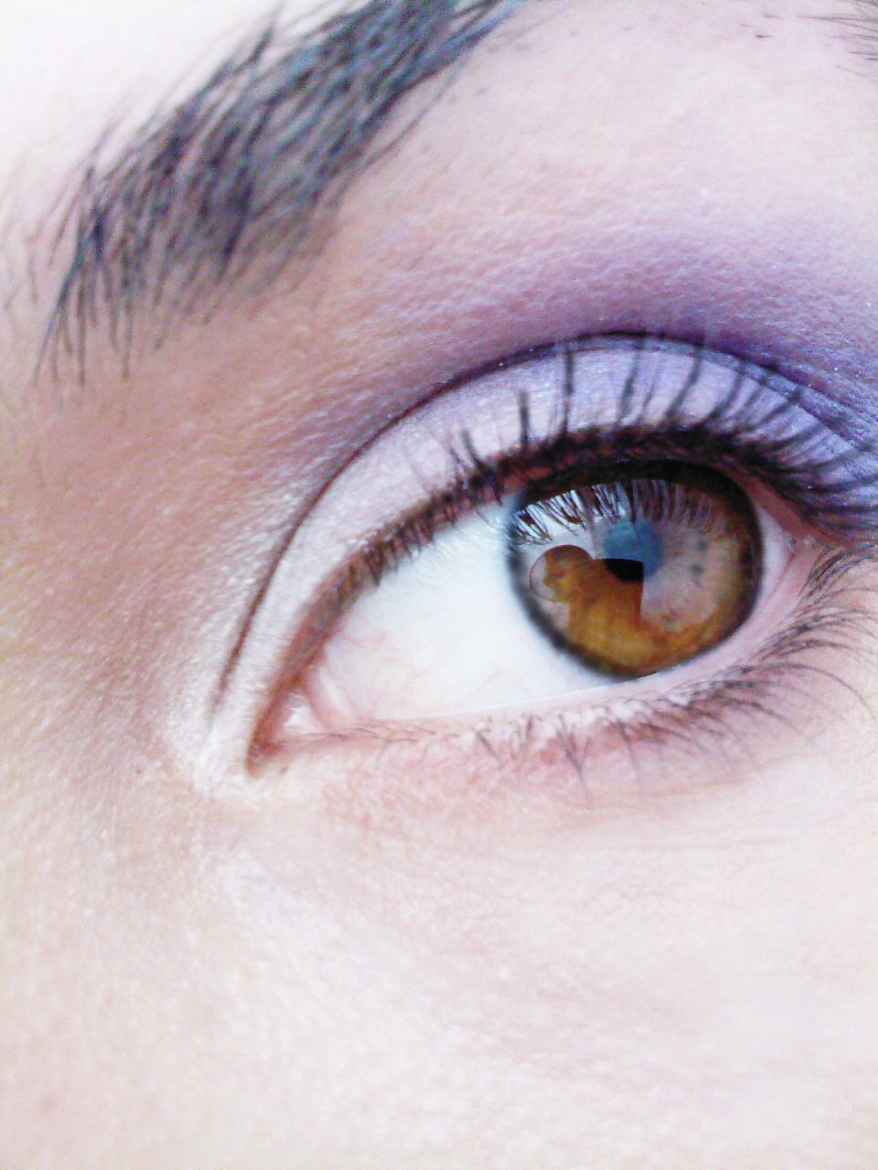 jardelle: Which contact lenses are the best? Freshlook ...